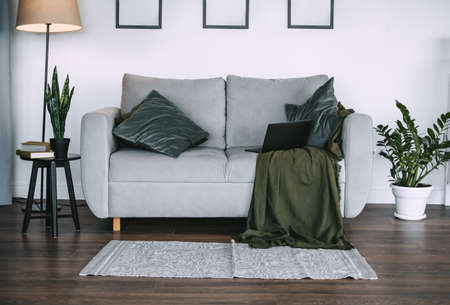 Living room with green plants and gray sofa with pillow and laptop computer, home comfort, interior details. High quality photo Banco de Imagens