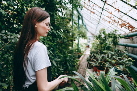 Young woman gardener in glasses and apron working in a garden center. ... High quality photo