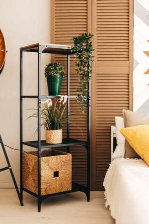 Black metal rack shelving with plants in the bedroom. High quality photo