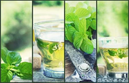 comida arabe: Collage de té de menta. Recién cortado menta desde el jardín de hierbas con té de menta y cubos de azúcar Foto de archivo