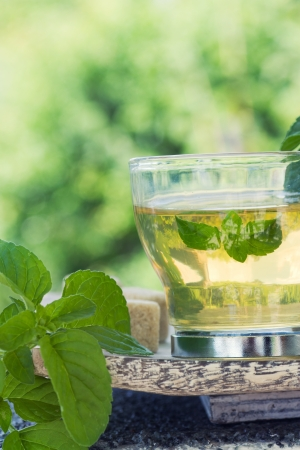 Mint tea with fresh mint leaves and sugar cubes Stock Photo