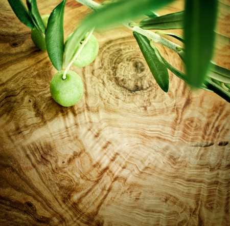 Summer olives nature background with fresh olive branch and olive wood photo