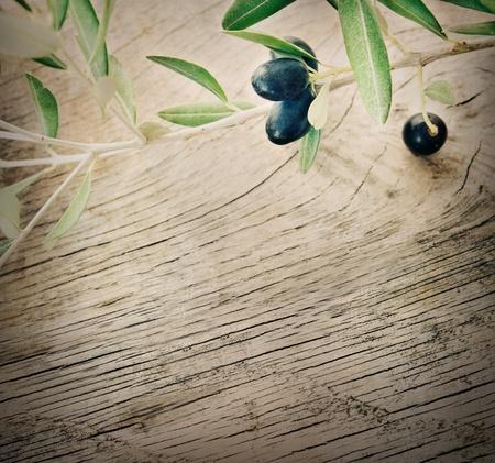 La nature de fond d'�t� des olives avec rameau d'olivier fra�che et fond en bois