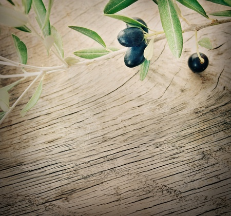 Summer olives nature background with fresh olive branch and wooden background Stock Photo