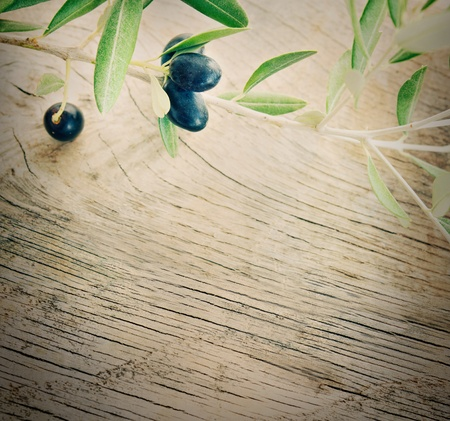 Summer olives nature background with fresh olive branch and wooden background photo
