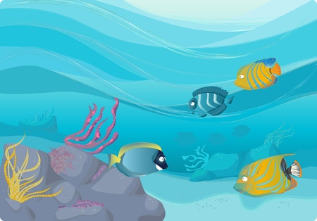 swimming underwater: Coral reef illustrations. Angel fish with wavy background.