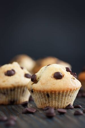 baked treat: Vanilla muffins with chocolate chips. Shallow depth of field. Stock Photo