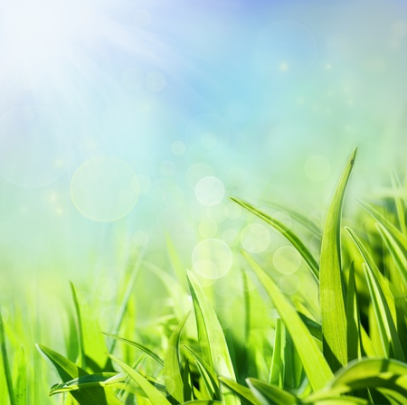 Spring background Stock Photo - 11226338