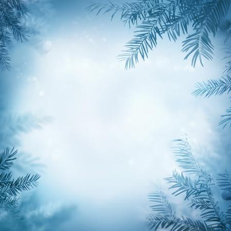La nature de fond fronti�re hiver. Vue � travers la branche de pin avec des baies Banque d'images