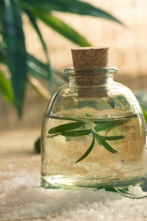 natural setting: Spa wellness setting with rosemary  and  natural remedies.