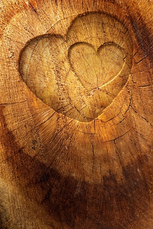 bark: Valentines background Stock Photo