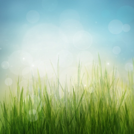 Spring or summer abstract season nature background with nature colors and bokeh lights. photo