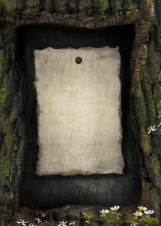 bark background: Vintage paper on wood background. Nature spring forest design in wooden frame with ladybug and flowers and burned paper.
