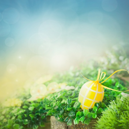 Colorful Easter holiday concept with yellow eggs  in nature photo