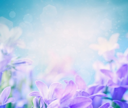 purple lilac: Beautiful spring background with campanula bouquet