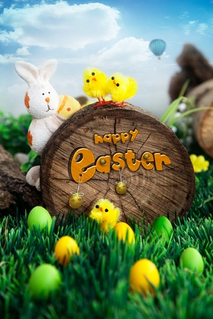 Holiday nature concept with easter hunt   Eggs in the sunny meadow photo
