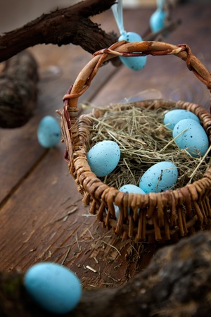 Easter decoration background with blue eggs on wooden background photo