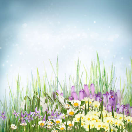 Spring floral background photo
