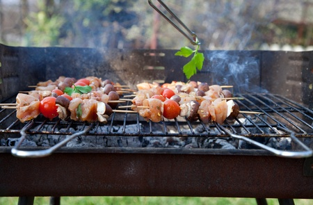 Spring barbecue: Chicken and vegetables barbecue in the garden Stock Photo - 13163149