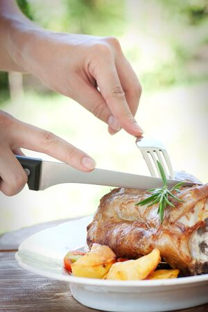 Delicious roasted and baked Veal knuckle with potatoes photo