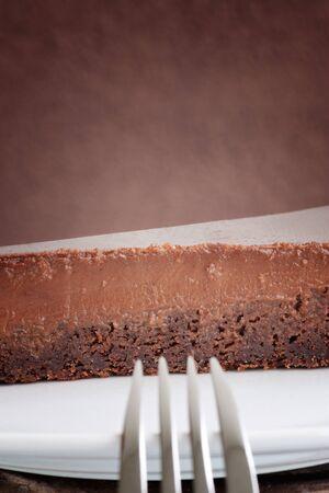 Delicious juicy chocolate sponge cake with copyspace photo