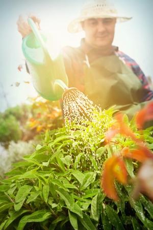 Spring garden concept. Male is doing garden work in herb garden photo