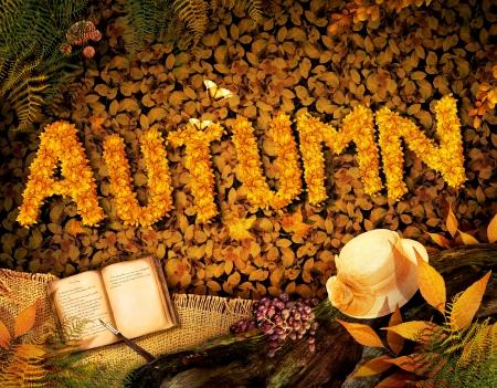 Hösten säsongen konceptdesign. Fall bakgrund med text i vacker gul skog. Vintage design med höst frukt, svamp, löv och bok dagbok.