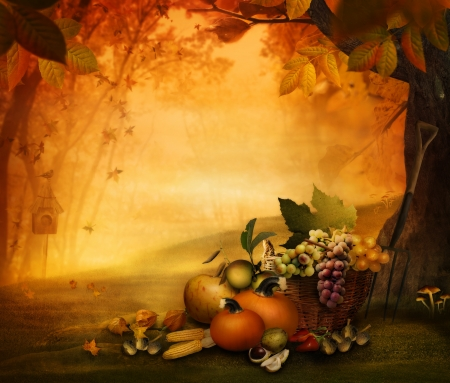 Autumn design - Season fruit the frest. Autumn valley with pumpkins, grapes, mushrooms, vor,acorns, chestnut photo