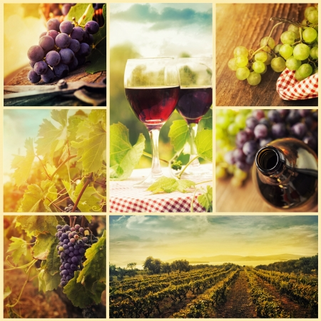 Collage av rustik vin, vindruvor och vingård bilder