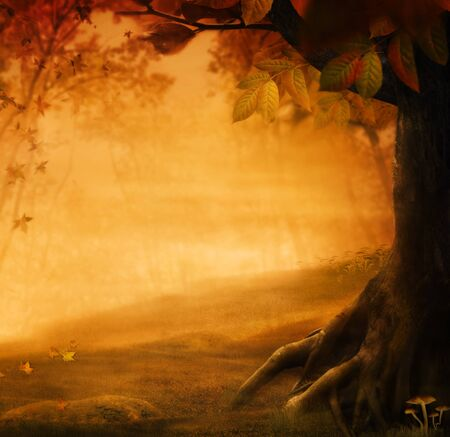 Autumn design - Forest in fall. Autumn valley with mushrooms Falling leaves and bird house in he background.  Space for your autumnal text. Fall background concept with copyspace. photo