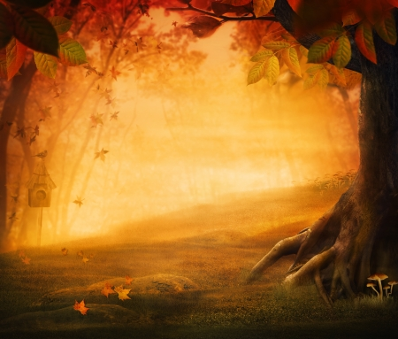fall mushroom: Autumn design - Forest in fall. Autumn valley with mushrooms Falling leaves and bird house in he background.  Space for your autumnal text. Fall background concept with copyspace.