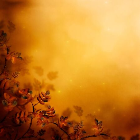 Autumn design floral background with leaves in season colors. Fall decoration concept. Stock Photo - 15351914