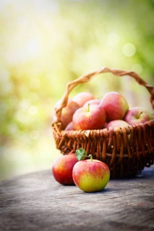 Fresh harvest of apples. Nature theme with red grapes and basket on wooden background. Nature fruit concept. Stock Photo