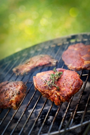 Grillad PorkSteak BBQ med örter Barbecue Meat Steak utomhus i brand grill