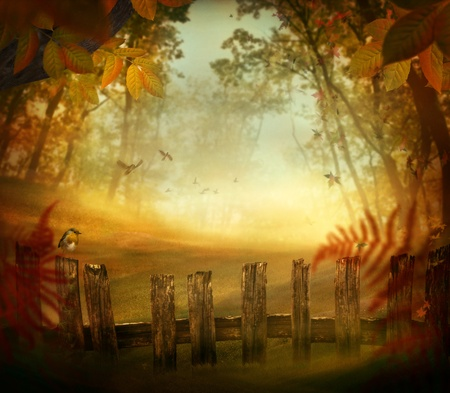 Autumn design - Forest with wood fence  Fall art design with landscape with pastel colors in woods photo