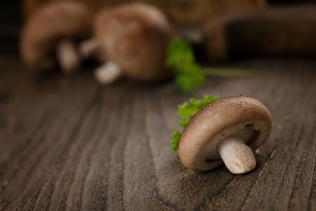 shiitake: Shiitake mushrooms on wood.