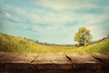 Fond vert printemps. Herbe et de l'art de Cloudscape conception. environmetal paysage Summer concept. Banque d'images