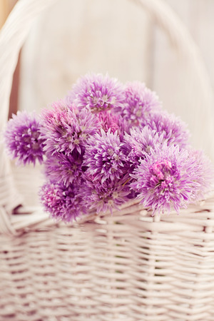 Fresh chives flower over rustic background. Spring or summer floral background photo