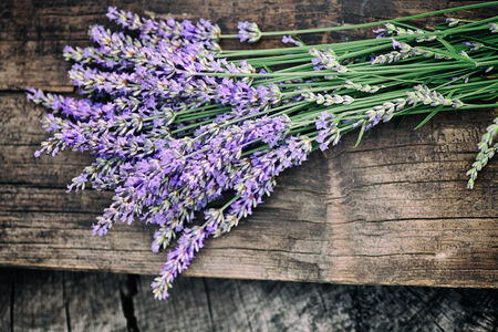 Fresh lavender over wooden . Summer floral with lavender flowers and wood. photo