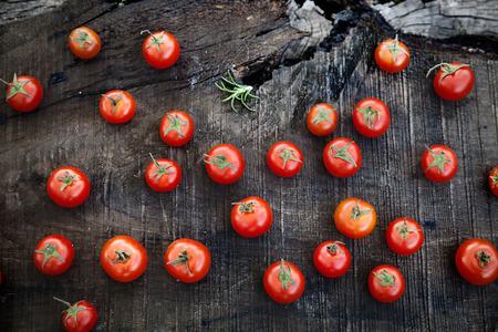 tomate de arbol: Hortalizas frescas. Tomates de cereza con el romero en la madera en el jardín vegetal