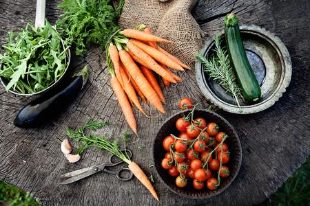 étel: Friss bio zöldség. Food háttérben. Egészséges ételek a kertben