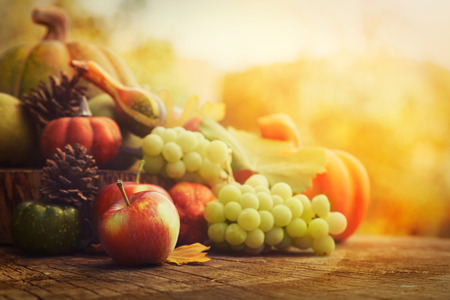 Autumn nature concept. Fall fruit and vegetables on wood. Thanksgiving dinner photo
