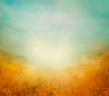 Autumn or summer abstract nature background with blue sky in the back. Summer or autumn sunset Stock Photo