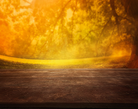 Autumn or summer abstract nature background with afternoon meadow.  Summer or autumn sunset.  Table with landscape photo