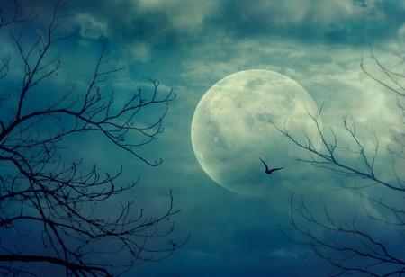 Halloween achtergrond. Spooky bos met volle maan en dode bomen Stockfoto