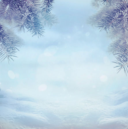 Winter snow landscape with snow flakes Stock Photo