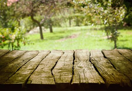 春の緑の背景。庭園と果樹園アート デザイン。夏観たランドス ケープ概念。 写真素材