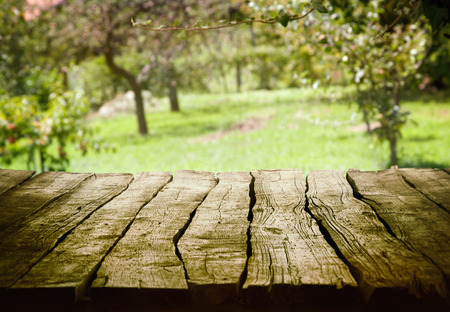 Frühling grünen Hintergrund. Garten und Obstgarten art Design. Sommer Umwelttechnik Landschaftskonzept. Lizenzfreie Bilder