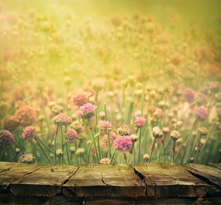 luz natural: Primavera de fondo con mesa. Florece el fondo. Mesa de madera