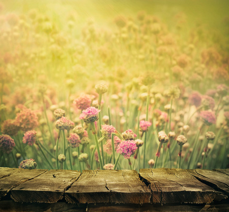 meadows: Spring background with tabletop. Flowers background. Wood table
